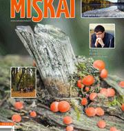 Žurnalo Miškai elektroninė versija